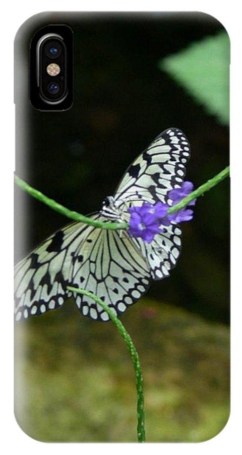 Black And White Butterfly IPhone X Case featuring the photograph Black And White Butterfly by Serina Wells