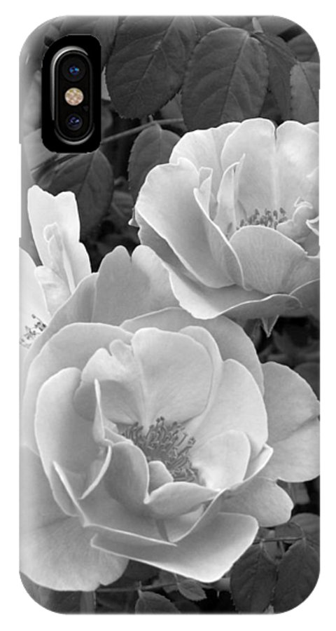 Rose IPhone Case featuring the photograph Black And White Roses 1 by Amy Fose