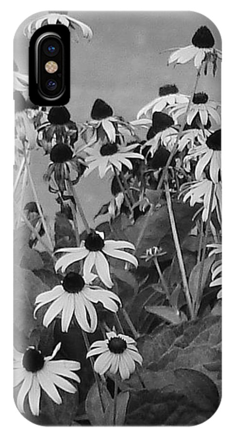IPhone X Case featuring the photograph Black And White Susans by Luciana Seymour