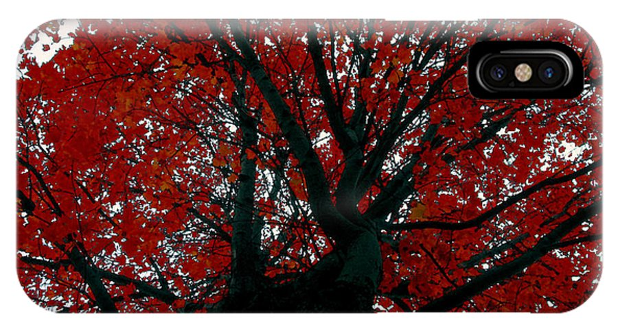 Red Tree IPhone X Case featuring the painting Black Bark Red Tree by David Lee Thompson