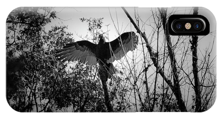 Black IPhone X Case featuring the photograph Black Buzzard 4 by Teresa Mucha