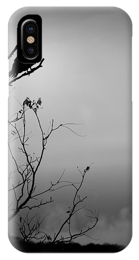 Black IPhone X Case featuring the photograph Black Buzzard 7 by Teresa Mucha