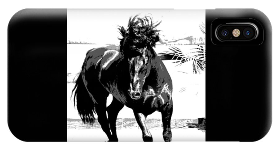 New Horse Pictures IPhone X Case featuring the photograph Black Stallion by Fay Geddes