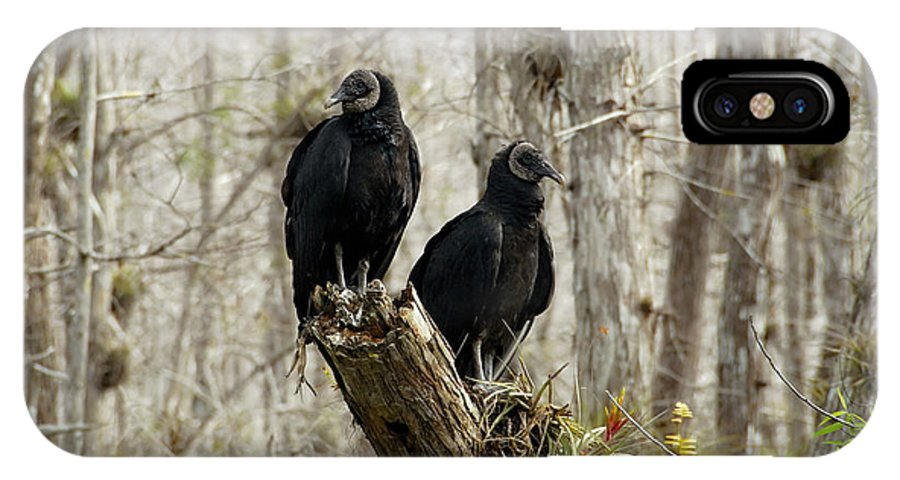 Black Vultures IPhone X Case featuring the photograph Black Vultures by David Lee Thompson