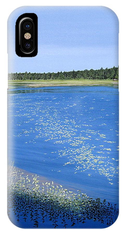 Landscapes IPhone X Case featuring the painting Blackstone Bog by Kenneth M Kirsch