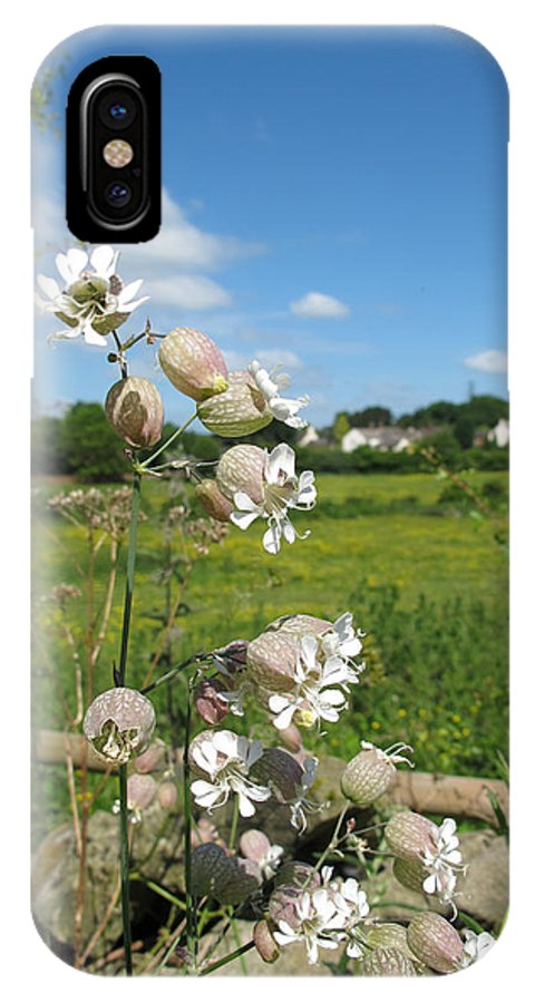 Bladder Campion IPhone X Case featuring the photograph Bladder Campion On Stone Wall by Bob Kemp
