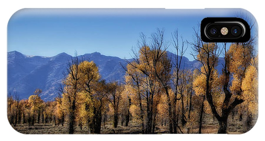 Usa IPhone X Case featuring the photograph Blazing Cottonwoods by Mitch Johanson