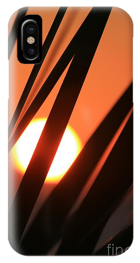 Sun IPhone Case featuring the photograph Blazing Sunset And Grasses by Nadine Rippelmeyer