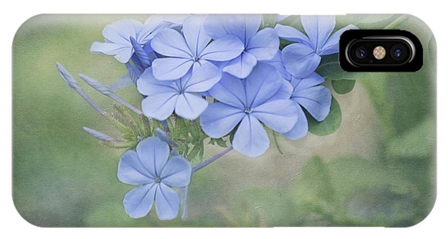 Flower IPhone X / XS Case featuring the photograph Blooming Blues by Kim Hojnacki