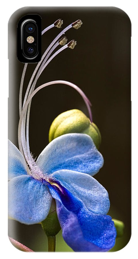 Flower IPhone X Case featuring the photograph Blooming Butterfly by Christopher Holmes