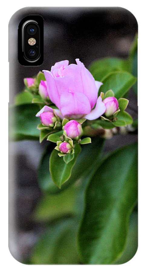 Nature IPhone X Case featuring the photograph Blossom In Pink by Traditionally Unique Photography