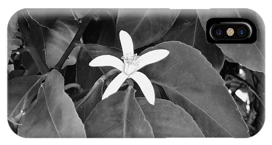Black And White IPhone X Case featuring the photograph Blossom by Peggy Leyva Conley