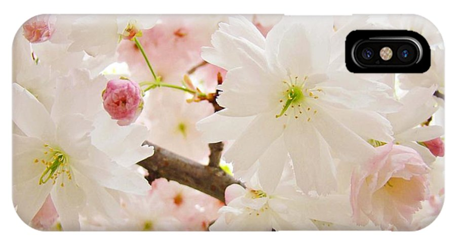 Nature IPhone X Case featuring the photograph Blossoms Art Print 53 Sunlit Pink Tree Blossoms Macro Springtime Blue Sky by Baslee Troutman