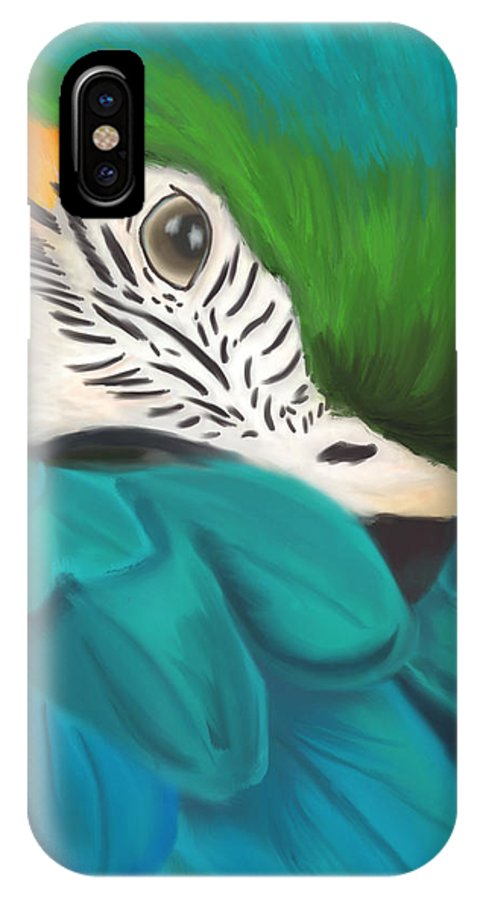 Parrot IPhone X / XS Case featuring the painting Blue And Gold Macaw by Becky Herrera