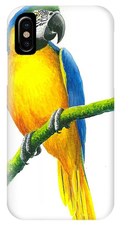 Chris Cox IPhone X Case featuring the painting Blue And Gold Macaw by Christopher Cox