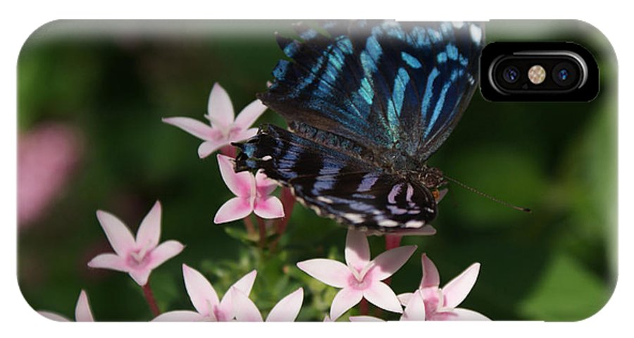 Butterfly IPhone X Case featuring the photograph Blue And Pink Make Lilac by Shelley Jones