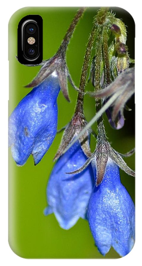 Blue Bells IPhone X Case featuring the photograph Blue Bells Are Ringing by Hella Buchheim
