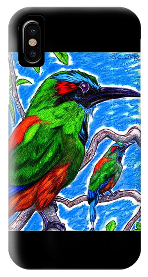 Bird IPhone X Case featuring the drawing Blue Browed Motmot by Bryant Lamb
