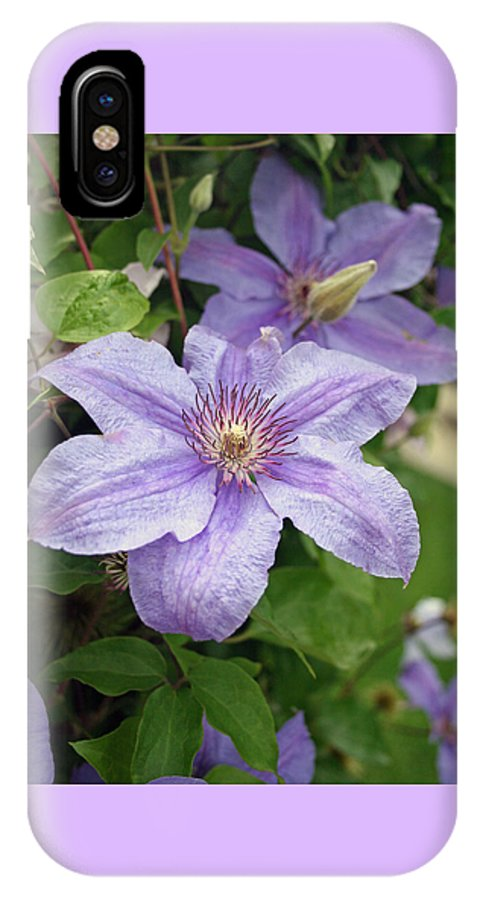 Clematis IPhone X Case featuring the photograph Blue Clematis by Margie Wildblood