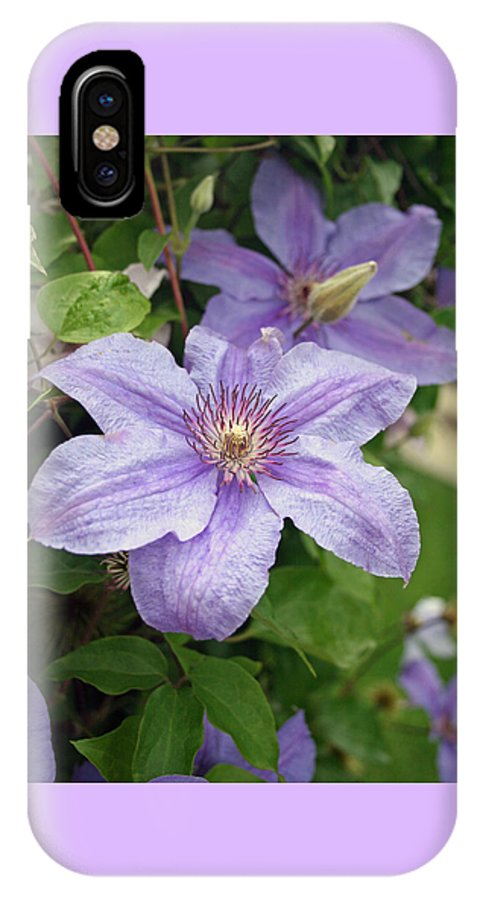Clematis IPhone Case featuring the photograph Blue Clematis by Margie Wildblood