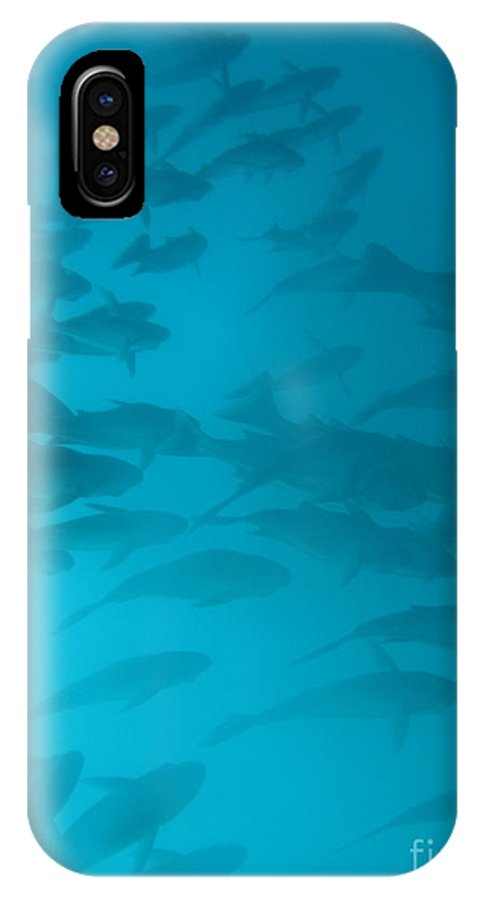 Underwater IPhone X Case featuring the photograph Blue Flash by Chad Natti