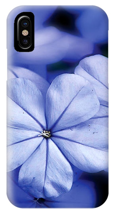 Nature Photography IPhone X Case featuring the photograph Blue Flowers by Craig Incardone