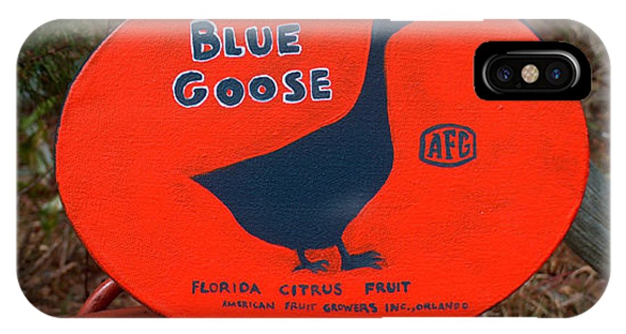 Blue Goose IPhone Case featuring the painting Blue Goose by Racquel Morgan