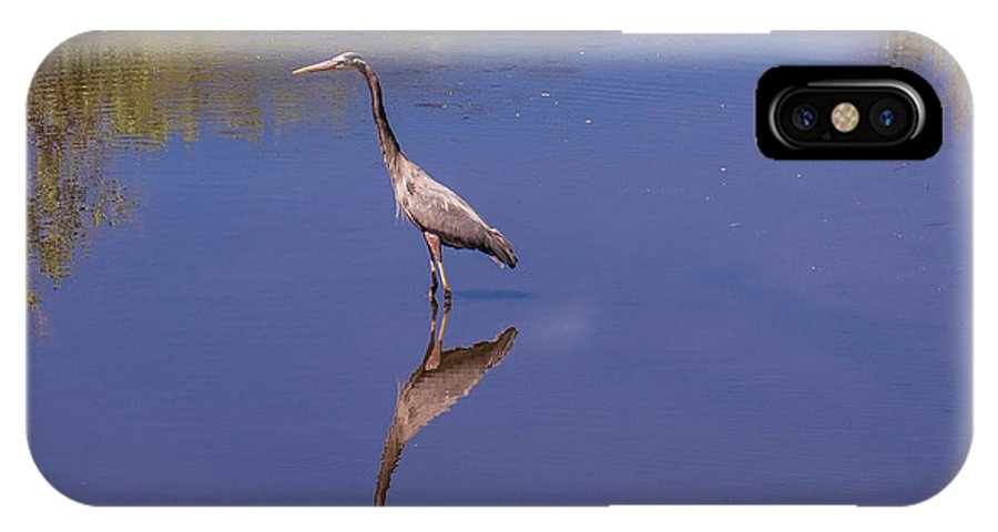 Birds IPhone X Case featuring the photograph Blue Herron Reflection by William Randolph