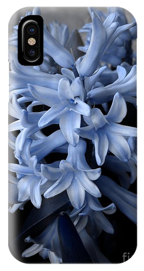 Blue IPhone X Case featuring the photograph Blue Hyacinth by Shelley Jones