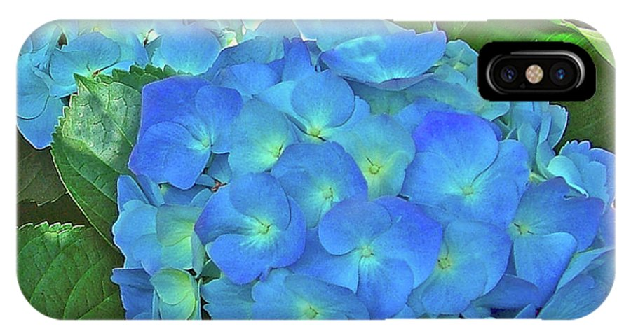 Blue Hydrangea In Bellingrath Gardens In Mobile IPhone X Case featuring the photograph Blue Hydrangea In Bellingrath Gardens In Mobile, Alabama2 by Ruth Hager