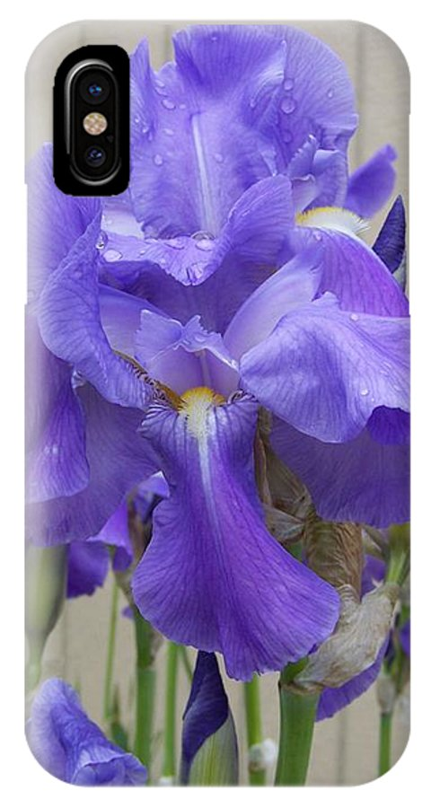 Flowers IPhone X Case featuring the photograph Blue Iris by Laurie Kidd