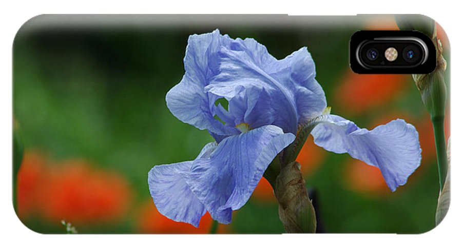 Iris IPhone Case featuring the photograph Blue Iris by Linda Murphy