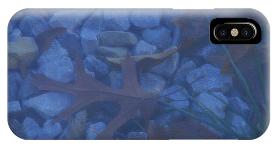 IPhone X Case featuring the photograph Blue Leaf by Luciana Seymour