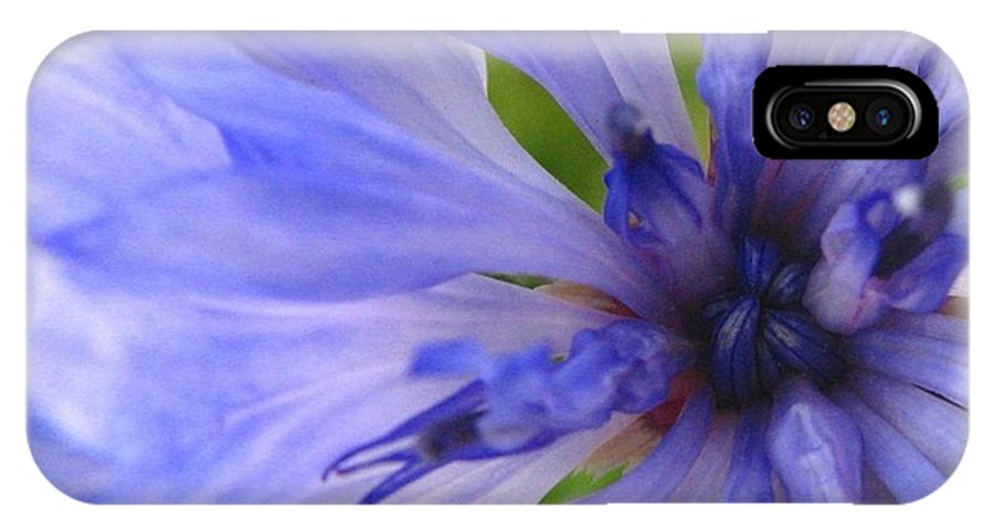 Flower IPhone X Case featuring the photograph Blue Princess by Rhonda Barrett