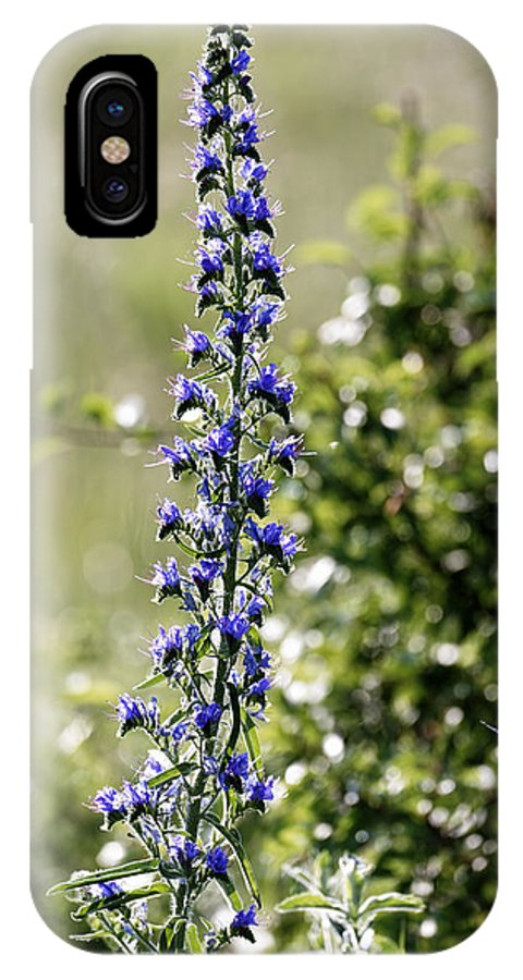 Agriculture IPhone X Case featuring the photograph Blue tower flower in the early morning light by Adrian Bud