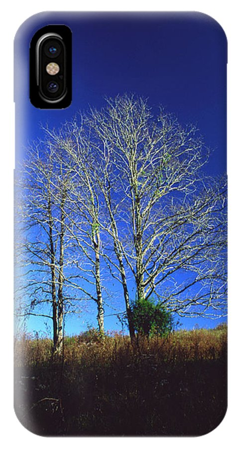 Landscape IPhone X Case featuring the photograph Blue Tree In Tennessee by Randy Oberg