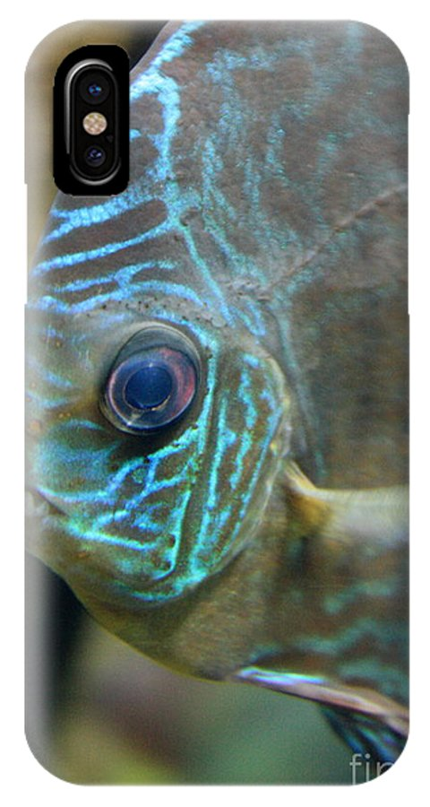 Blue Fish IPhone X Case featuring the greeting card Blue Tropical Fish by Carol Groenen