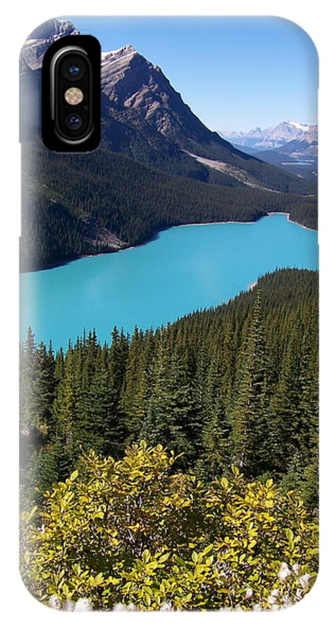 Scenic IPhone X Case featuring the photograph Blue Wolf In The Valley by Greg Hammond