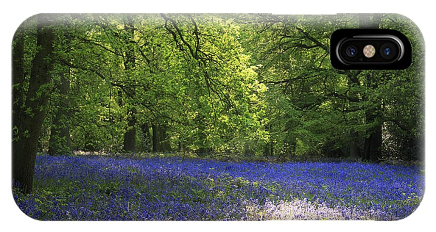 Bluebells IPhone X Case featuring the photograph Bluebells by Phil Crean