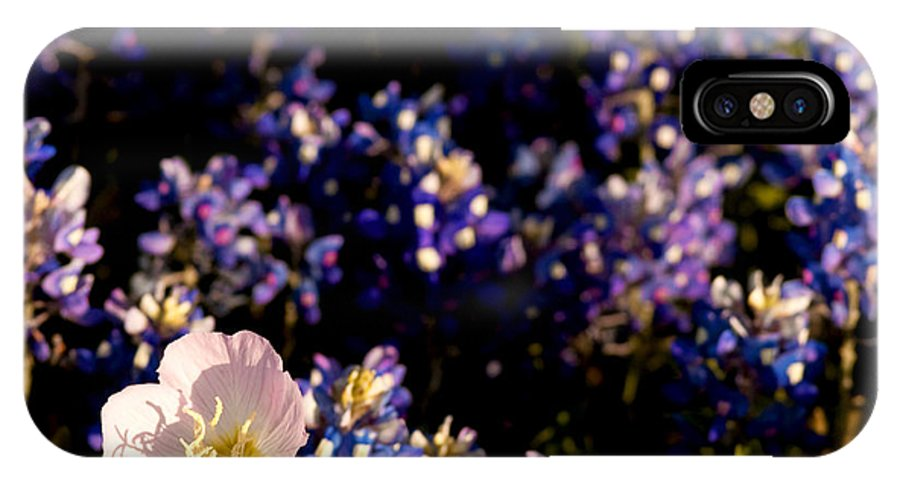 Bluebonnet IPhone X Case featuring the photograph Bluebonnets With Buttercup by Debbie Evans