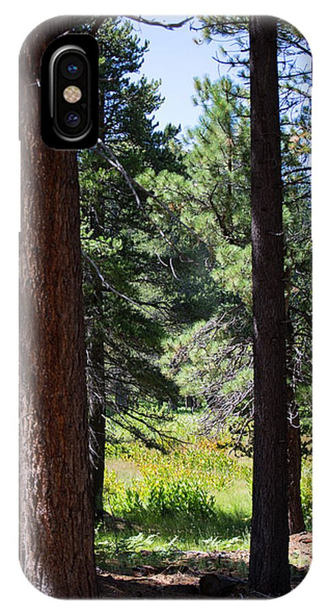 Landscape IPhone X Case featuring the photograph Bluff Lake Ca Through The Trees 7 by Chris Brannen