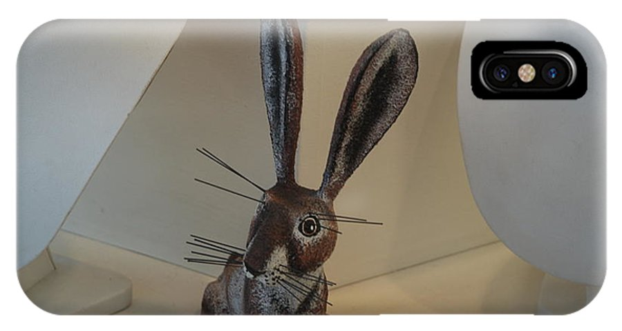 Rabbit IPhone X Case featuring the photograph Boink Rabbit by Rob Hans