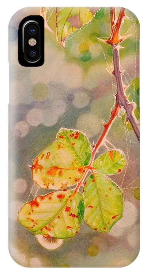 Bokeh IPhone X Case featuring the painting Bokeh - Sunlight On Brambles And Cobwebs by Grant Ham