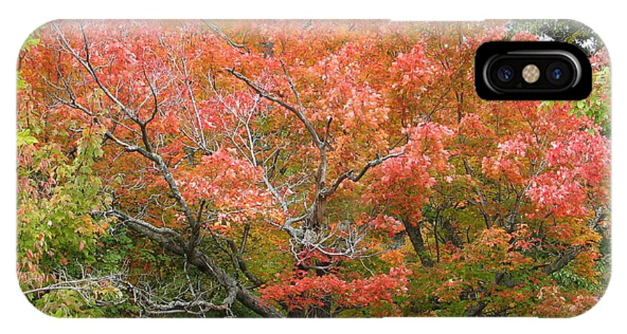Fall IPhone Case featuring the photograph Bonfire by Kelly Mezzapelle