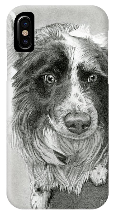 Border Collie IPhone X Case featuring the drawing Border Collie by Sarah Batalka
