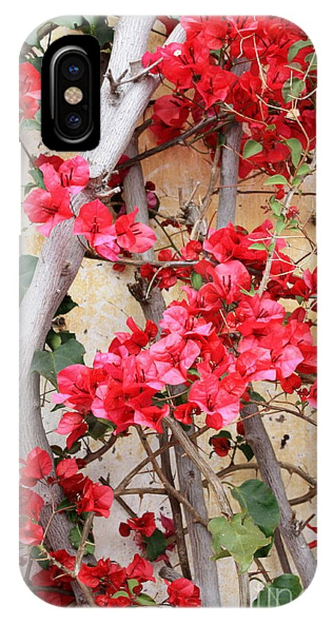 Bougainvilla IPhone X Case featuring the photograph Bougainvillea by Carol Groenen