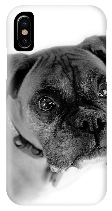 Boxer IPhone Case featuring the photograph Boxer Dog by Marilyn Hunt