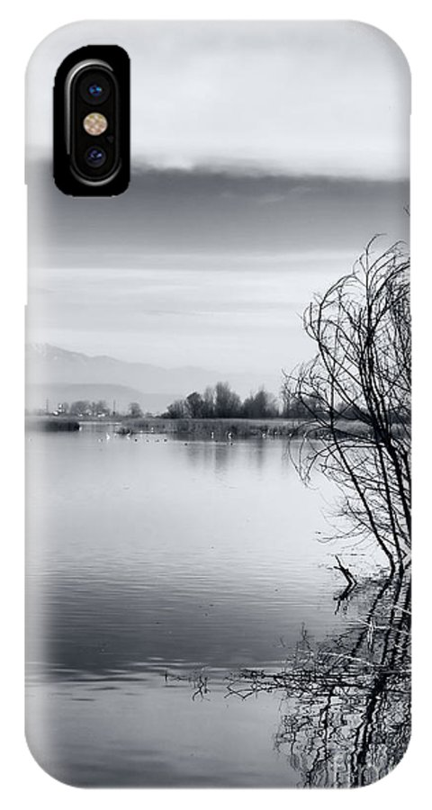 Reflection IPhone X Case featuring the photograph Branches by Gabriela Insuratelu