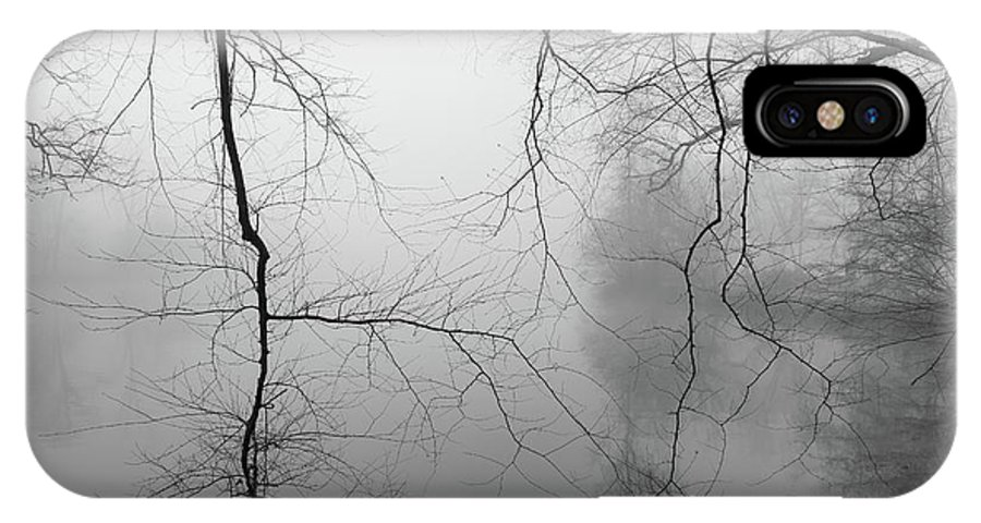 Lagoon IPhone X / XS Case featuring the photograph Branches In The Morning Mist by Dan Farmer