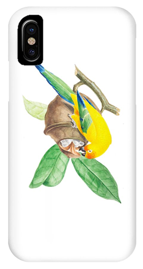 Brazilian IPhone X Case featuring the painting Brazilian Parrot by Philip Ralley